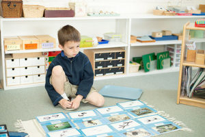 Animal Tracks Matching Montessori Activity