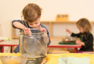 Montessori Toddler Classes